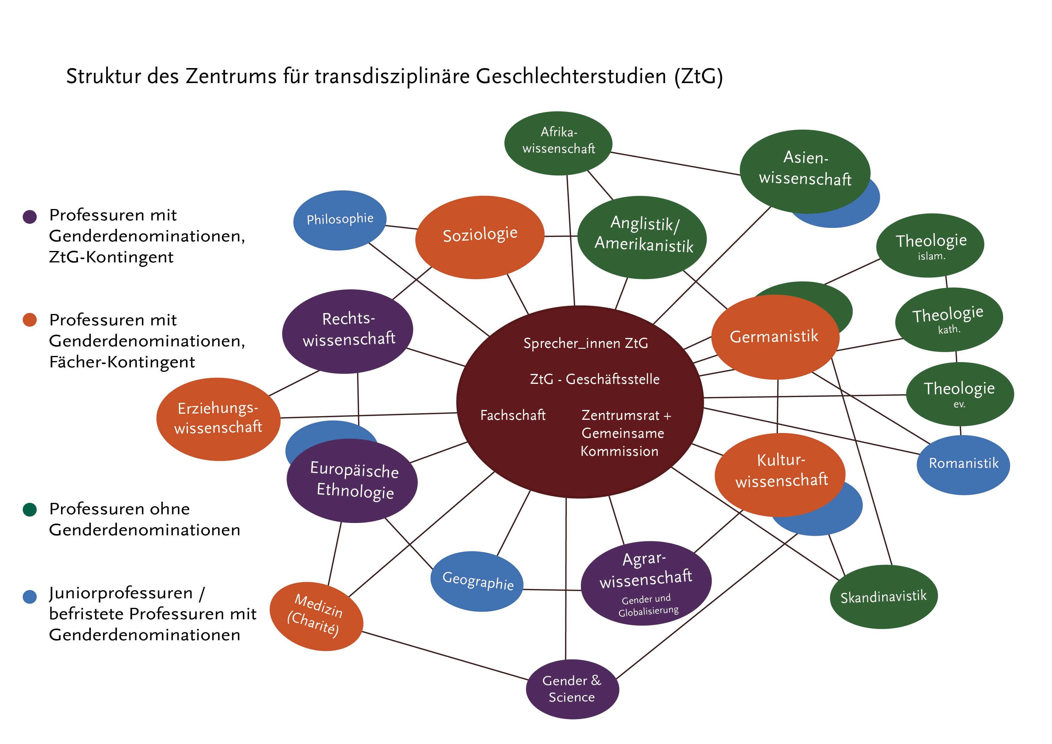 Zentrum für transdisziplinäre Geschlechterstudien Struktur Oktober 2021